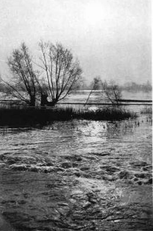 floods-1949.jpg