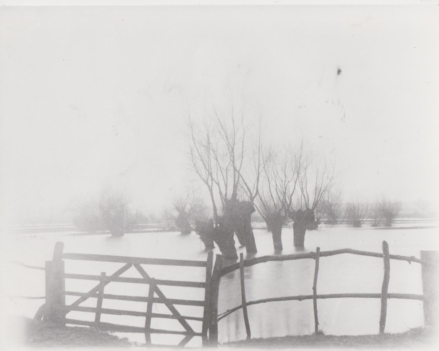 h130_flooded_fields_c1900-001.jpg
