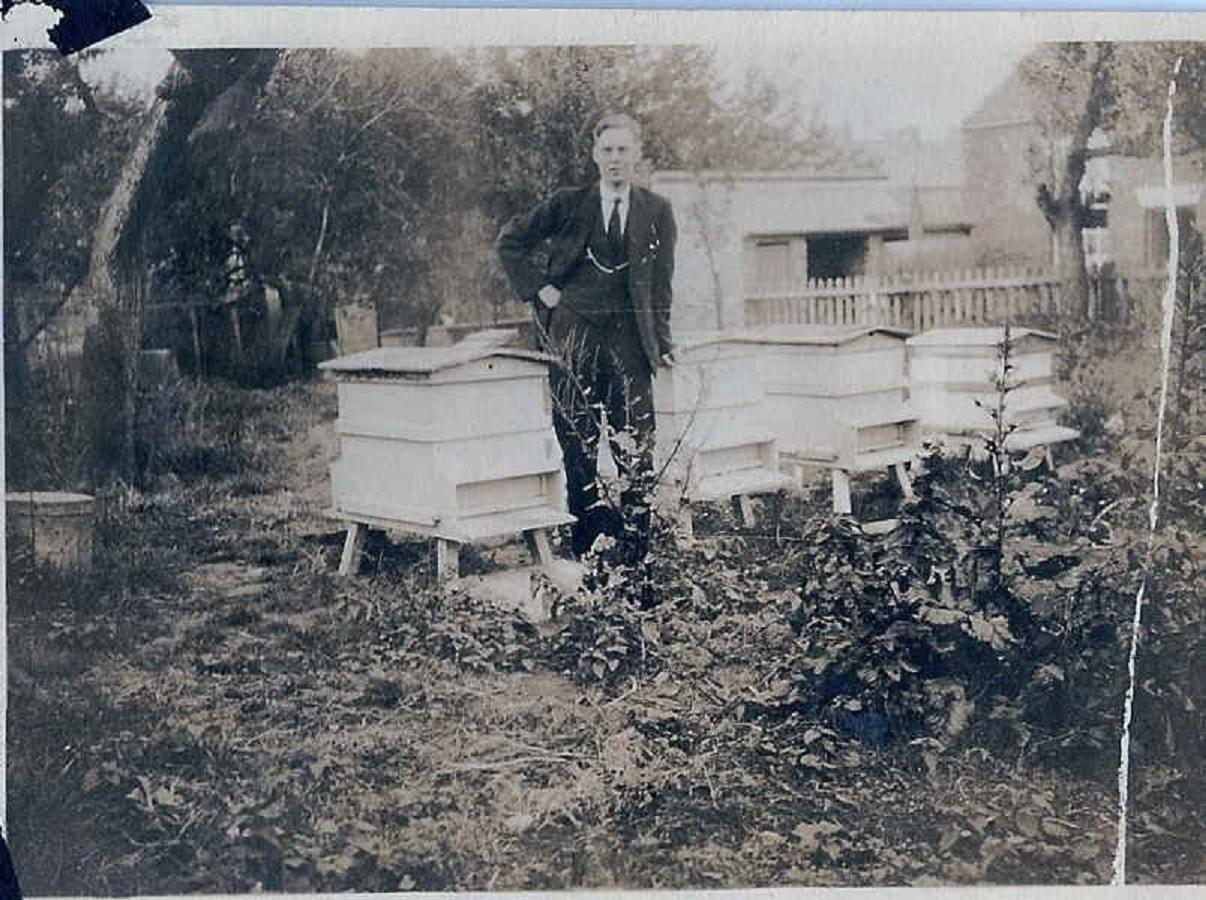 bertram-morris-with-beehives-1930s.jpg